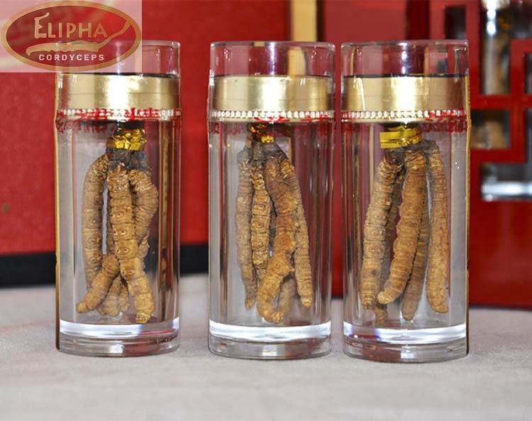 Cách ngâm rượu đông trùng hạ thảo khô.