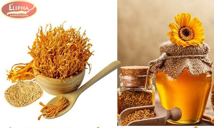 Tránh đông trùng hạ thảo bị mốc bảo quản bằng cách ngâm mật ong.