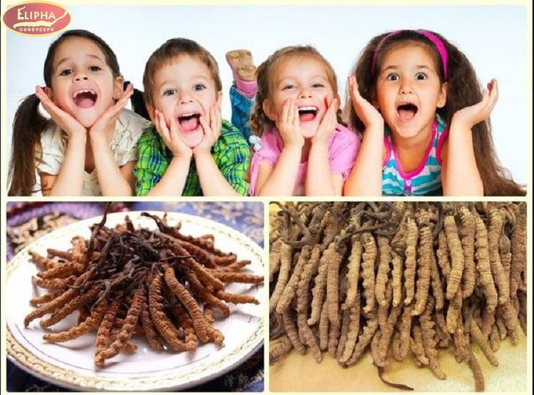 Đông trùng hạ thảo khi sử dụng cho trẻ dưới 5 tuổi sẽ gây nóng trong.