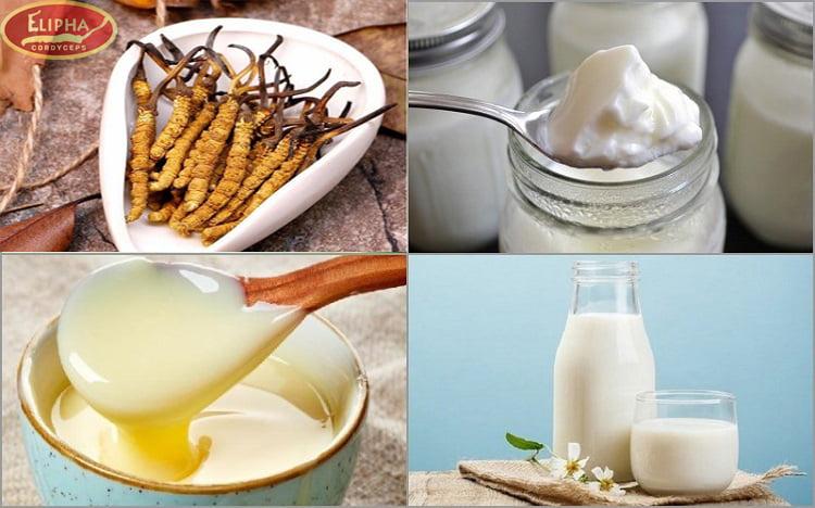 Các nguyên liệu làm sữa chua đông trùng hạ thảo.